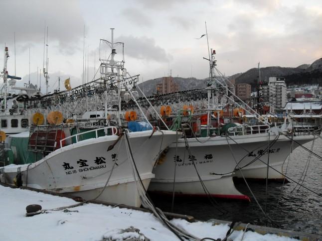 squid fishing boats, Japan